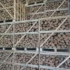 stacked crates of kiln dry logs